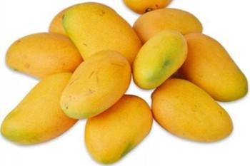 万博官网手机版网页版登录芒果:比国内其它产地同种芒果成熟快甜度高