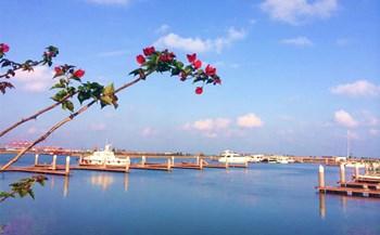 海口将新建一个渔业产业园、一个海洋牧场