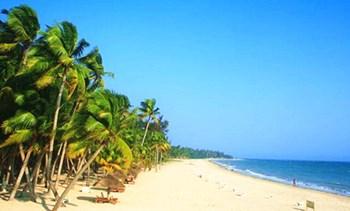 东郊椰林:文昌著名的以椰子林,椰子树为主题的旅游点