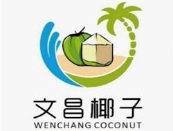 中国椰子之乡头条号