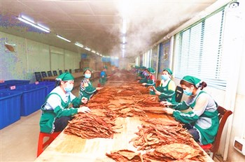 儋州:朝着高效发展路子迈进,做大做优做强农业产业