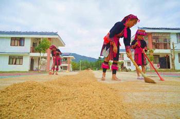 屯昌猪哈哈的农场为农民提供近百岗位