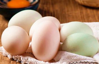 临高头乾海鸭蛋:蛋黄晶红,味美鲜香