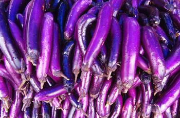 海垦茄子:肉质细嫩松软,品质好