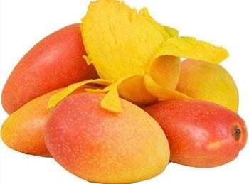 海垦神泉芒果:味甜芳香,果汁充盈、质地腻滑